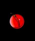 Κόκκινο πιπέρι σε ένα γυαλί με Στοκ εικόνα με δικαίωμα ελεύθερης χρήσης