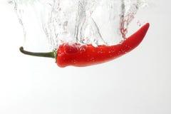 Κόκκινο πιπέρι τσίλι που εμπίπτει στο νερό στοκ φωτογραφίες
