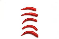Κόκκινο πιπέρι τσίλι σε μια σειρά Στοκ Εικόνες