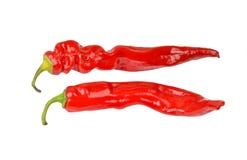 Κόκκινο πιπέρι τσίλι του Cayenne στοκ φωτογραφία
