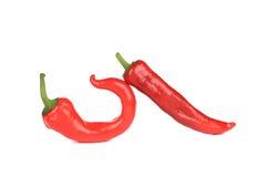 Κόκκινο πιπέρι τσίλι δύο Στοκ εικόνα με δικαίωμα ελεύθερης χρήσης