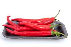 Κόκκινο πιπέρι τσίλι Στοκ Εικόνες