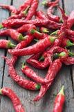 Κόκκινο πιπέρι τσίλι Στοκ εικόνες με δικαίωμα ελεύθερης χρήσης