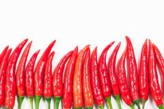 Κόκκινο πιπέρι τσίλι Στοκ Εικόνα