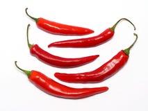 κόκκινο πιπεριών τσίλι Στοκ φωτογραφίες με δικαίωμα ελεύθερης χρήσης
