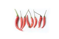 κόκκινο πιπεριών τσίλι Στοκ Φωτογραφίες