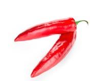 κόκκινο πιπεριών τσίλι Στοκ εικόνες με δικαίωμα ελεύθερης χρήσης