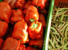 κόκκινο πιπεριών φασολιών Στοκ Φωτογραφίες
