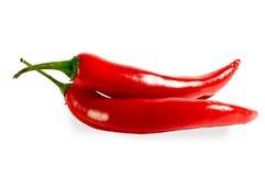 κόκκινο πιπεριών Στοκ Φωτογραφία