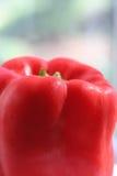κόκκινο πιπεριών Στοκ φωτογραφία με δικαίωμα ελεύθερης χρήσης