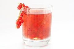 κόκκινο ποτών σταφίδων Στοκ Εικόνες