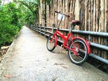 Κόκκινο ποδήλατο με το φυσικό υπόβαθρο Στοκ Φωτογραφίες