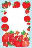 Κόκκινο πλαίσιο φρούτων δερμάτων ελεύθερη απεικόνιση δικαιώματος