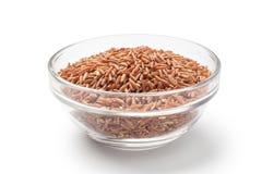 κόκκινο ρύζι σε ένα κύπελλο γυαλιού Στοκ φωτογραφίες με δικαίωμα ελεύθερης χρήσης