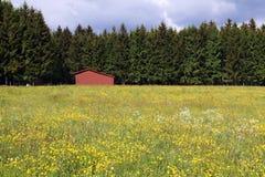 κόκκινο σιταποθηκών Στοκ Εικόνες