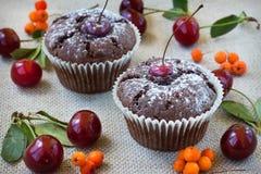 κόκκινο σοκολάτας κερασιών κέικ Στοκ Εικόνες