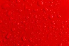 Κόκκινο σταγονίδιο νερού στη στέγη του αυτοκινήτου Στοκ εικόνα με δικαίωμα ελεύθερης χρήσης