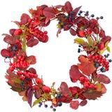 Κόκκινο στεφάνι φύλλων και μούρων φθινοπώρου που απομονώνεται στο λευκό Στοκ Εικόνες