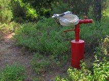 Κόκκινο στόμιο υδροληψίας πυρκαγιάς με τη μάνικα πυρκαγιάς Στοκ Φωτογραφίες