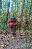 Κόκκινο στόμιο υδροληψίας πυρκαγιάς Στοκ φωτογραφία με δικαίωμα ελεύθερης χρήσης