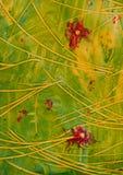 κόκκινο συρραφών εγγράφου λουλουδιών Στοκ φωτογραφία με δικαίωμα ελεύθερης χρήσης