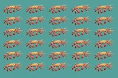 Κόκκινο σχέδιο καβουριών στο τυρκουάζ υπόβαθρο Στοκ Εικόνα