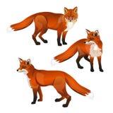 Κόκκινο σύνολο αλεπούδων ελεύθερη απεικόνιση δικαιώματος