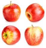 Κόκκινο σύνολο μήλων Στοκ Εικόνες