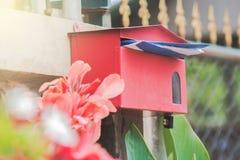 κόκκινο ταχυδρομείου κιβωτίων Στοκ Φωτογραφία