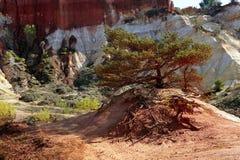 Κόκκινο τοπίο που σκάβεται από έξι γενεές των δημόσιων σχέσεων του Κολοράντο ανθρακωρύχων ocher Στοκ φωτογραφία με δικαίωμα ελεύθερης χρήσης