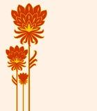 κόκκινο τρία λουλουδιών Στοκ φωτογραφία με δικαίωμα ελεύθερης χρήσης