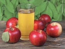 κόκκινο τρία μήλων Στοκ Εικόνες