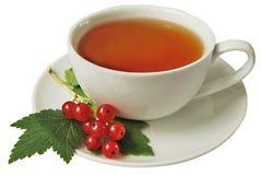 κόκκινο τσάι σταφίδων Στοκ Φωτογραφία