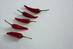 Κόκκινο τσίλι που τακτοποιείται σε μια σειρά Στοκ Εικόνα