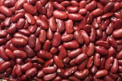 κόκκινο φασολιών φασολιών ανασκόπησης Στοκ φωτογραφία με δικαίωμα ελεύθερης χρήσης