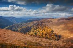 Κόκκινο φθινόπωρο Καρπάθια βουνά στοκ εικόνες