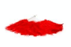 κόκκινο φτερών ανεμιστήρω&nu Στοκ Φωτογραφίες
