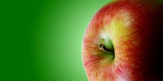 κόκκινο φυλλάδιων μήλων Στοκ φωτογραφία με δικαίωμα ελεύθερης χρήσης