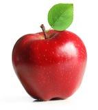 κόκκινο φύλλων καρπού μήλω Στοκ Εικόνα