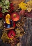 Κόκκινο φλυτζάνι του καυτού θερμαμένου κρασιού το φθινόπωρο μεταξύ των φύλλων Στοκ φωτογραφίες με δικαίωμα ελεύθερης χρήσης