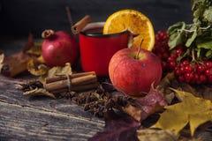 Κόκκινο φλυτζάνι του καυτού θερμαμένου κρασιού το φθινόπωρο μεταξύ των φύλλων Στοκ Φωτογραφίες