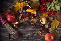 Κόκκινο φλυτζάνι του καυτού θερμαμένου κρασιού το φθινόπωρο μεταξύ των φύλλων Στοκ φωτογραφία με δικαίωμα ελεύθερης χρήσης