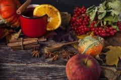 Κόκκινο φλυτζάνι του καυτού θερμαμένου κρασιού το φθινόπωρο μεταξύ των φύλλων Στοκ Φωτογραφία