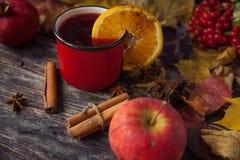 Κόκκινο φλυτζάνι του καυτού θερμαμένου κρασιού το φθινόπωρο μεταξύ των φύλλων Στοκ εικόνα με δικαίωμα ελεύθερης χρήσης