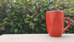 Κόκκινο φλυτζάνι Στοκ εικόνα με δικαίωμα ελεύθερης χρήσης