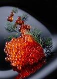 Κόκκινο χαβιάρι με τον άνηθο στοκ εικόνες με δικαίωμα ελεύθερης χρήσης