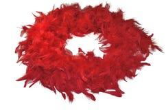 Κόκκινο χνουδωτό boa φτερών στο άσπρο υπόβαθρο Στοκ Εικόνες