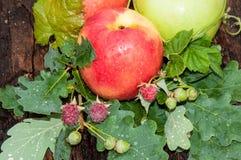 Κόκκινο χρώμα της Apple Στοκ Εικόνα