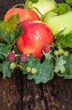 Κόκκινο χρώμα της Apple Στοκ εικόνες με δικαίωμα ελεύθερης χρήσης