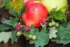 Κόκκινο χρώμα της Apple Στοκ Εικόνες